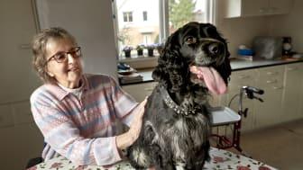 Årets bragdhund Salsa tillsammans med sin granne Sigrid.