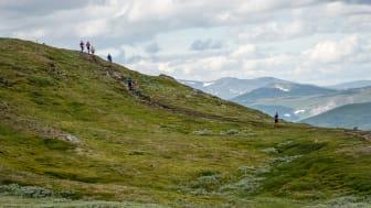 Årefjällen bjöd på sin bästa sida när KIA Fjällmaraton Årefjällen inleddes i lördags med totalt 700 fjällöpare iloppen Salomon 27K och Välliste Runt.