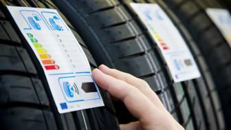 Vælger du de helt rigtige dæk?