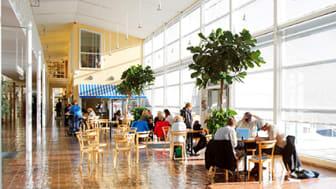 Pressinbjudan - information om förändringar i Högskolan i Gävles programutbud