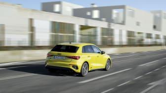 Audi S3 Sportback (Pytongul)