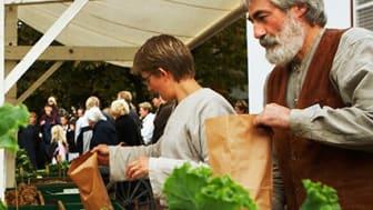 Fredriksdal bygger trädgård i Malmö