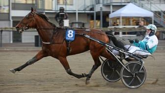 Örjan Kilström på Åby. FOTO: MALIN ALBINSSON / TR BILD