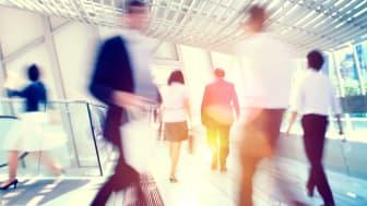 CFO Survey: Svenska företag visar fortsatt optimism och investeringsvilja