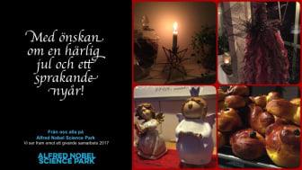 God Jul & Gott Nytt År önskar vi er alla!