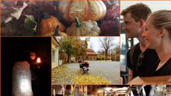 Halloween med spökvandring i Sigtuna