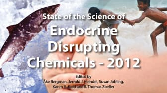 Ny WHO-rapport: Kemikalier bakom flera folksjukdomar