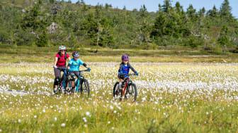 Flere svenske sykkelgjester til Trysil når Scandinavian Mountains Airport får sommerruter. Foto: Jonas Sjögren/Trysil
