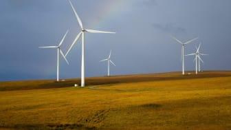 Gothaer GarantieRente Index: Nachhaltigkeit sehr gefragt