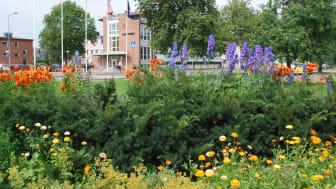 Sunne kommun är femma i Sverige och återigen bäst i Värmland på att ge service till företagen i myndighetsutövning inom brandskydd, bygglov, markupplåtelse, miljö- och hälsoskydd, livsmedelskontroll och serveringstillstånd.