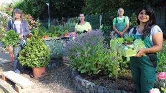 Das Expertenteam der Hephata-Gärtnerei für Gemüse- und Kräuteranbau: Sabine Simshäuser (von links nach rechts), Sandra Schmidt, Francisco Sanchez Guitierrez und Ana-Maria Cardona.