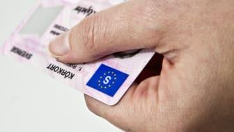 Skydd mot ID-stöld, Sveriges snabbast ökande försäkring
