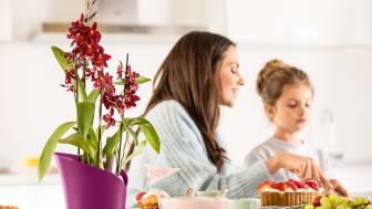 Eine ganze Familie zum Muttertag