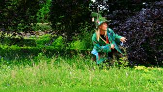 """Vis Varsam """"vet allt!"""" om Bokskogen. Du möter henne och många i Torups Bokskog den 4 september"""