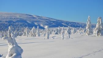 SkiStar Sälen: Mer snö väntas i Sälenfjällen