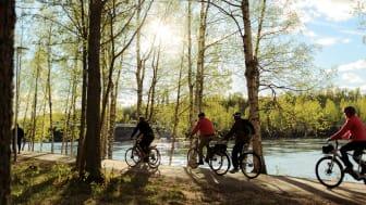 Guidad cykeltur Umeå Tours