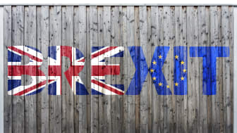EXPERT COMMENT: Q+A: What's going on with Brexit and the Irish border?