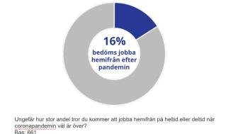 16% bedöms jobba hemifrån efter pandemin