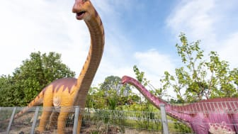 The 3.5-km cycling and jogging path features life-sized dinosaur exhibits and a one-stop location where visitors can rent bicycles, shower and dine