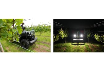 UGV testing in the grape orchard (Left) & UGV can collect data in the night time (Right)
