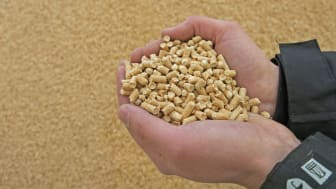Approximately 1.7 million tonnes of pellets were produced in Sweden in 2016.