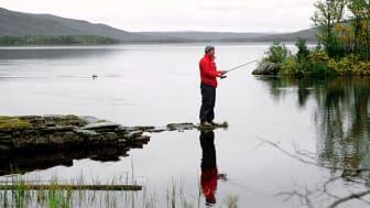 Person som fiskar i en fjällsjö. Foto: Mostphotos