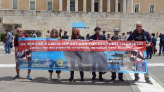 Spontan-Demo vor dem griechischen Parlament in Athen (v.r.: Jürgen Ortmüller (WDSF), Andreas Morlok (ProWal), Stefan B. Eck (EU-Parlament) mit Tierschützern
