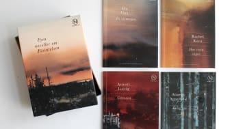 Fyra noveller om Förintelsen från förlaget Novellix.