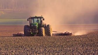 Vid odling utan glyfosat kan exempelvis behovet av jordbearbetning öka för att hantera ogräset. Foto: Allan Wallberg.