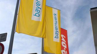 Naila verlängert Konzession mit Bayernwerk