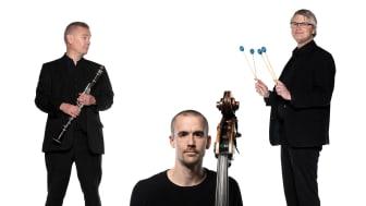 Blåsarsymfonikernas lilla jazzgrupp. Foto Mats Bäcker och Markus Gårder. Bilden är ett collage.