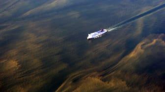Algblomning i Östersjön. Foto: Kustbevakningen