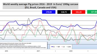 World weekly average Pig prices 2016-2019