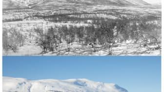 Fjället Nuolja i Abisko i vinterskrud.