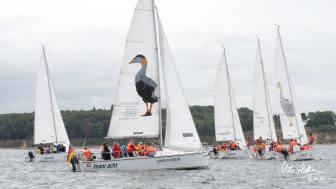 Schueler Cup auf team acht Booten (c) Udo Hallstein (3)