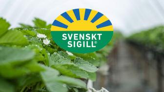 IP Sigill Frukt & Grönt säkrar att maten du får i dig är säker