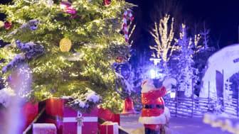 Kosta julemarked, Kronoberg