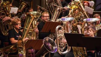 Tubafrossa högupplöst Musikalika foto Bertil Thorslund.JPG