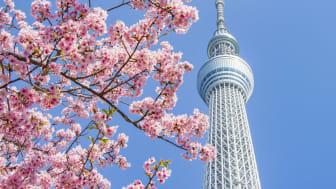 Capture your memories of TOKYO SKYTREE
