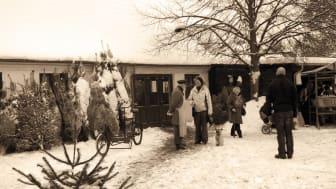 Julemarked i Købmandsgården beskåret