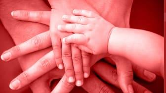Neue Ergebnisse zur Bedeutung der Familiären Hypercholesterinämie bei Herz-/Kreislauf-Erkrankungen: endokrinologikum Hamburg intensiviert Aufklärungsinitiative im Kampf gegen Unterdiagnostik und Unterversorgung
