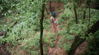 Maier Sports_SS21_Hiking_b_09