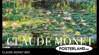 Claude Monet Bro över Näckrosdamm