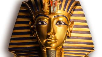 Lärarveckor med fritt inträde i Tutankhamun-utställningen