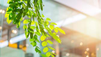 Krav på klimatdeklaration för nya byggnader fick grönt ljus