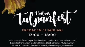 Hvilans Tulpanfest
