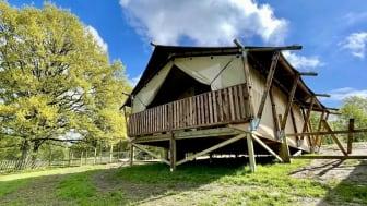"""Nya glampingsatsningen """"Wild Lodge"""" på Skånes Djurpark går mot slutsålt innan första gästen checkat in"""