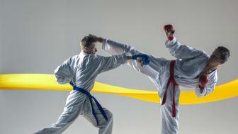 Karate bilde