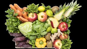 Starta det nya året med frukt och grönt i flytande form