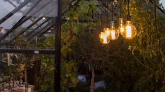 Skapa stämning i växthuset med lampor från Danlamp.